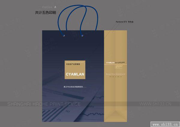 矽亚投资公司手提袋设计